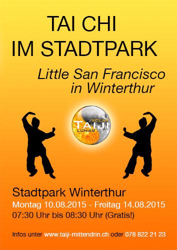 Tai Chi im Stadtpark Winterthur 2015